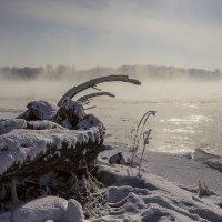 Енисей не замерзает.( -28) :: Евгений Герасименко