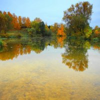 Осенние краски :: Nikita Volkov