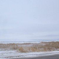4 января Оренбуржье Холодно и метёт :: Арсений Корицкий