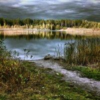 Уж небо осенью дышало... :: Елена Строганова