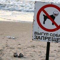 Они не признавали  знаков... :: Валерий Князькин