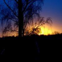закат :: Андрей Герасимов