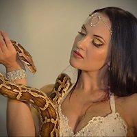 Про змея... :: Василий Богданов
