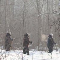 Пешая прогулка в лесу :: Alexey Romanenko