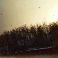 Снегопад :: Олеся Амельченко