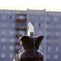 вода :: Ольга
