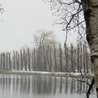 Питерская зима... :: Валентина Харламова