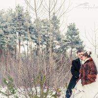 Зима :: Vitaly -