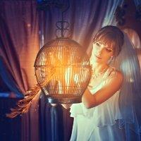 Жар-птица :: Наталия Карлинская