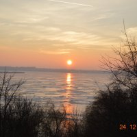 лед,солнце,кусты :: Михаил Bobikov