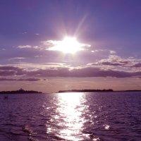 Солнечная дорожка :: Юлия Шабалдина