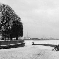 Питер зимой :: Анна Павлова