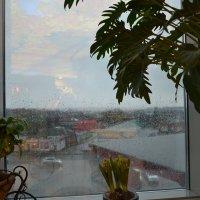 Дождь в январе. :: Михаил Столяров