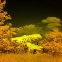 Пейзаж в IR с самолетом :: Эдуард Цветков