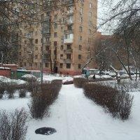 Заснеженный двор :: Владимир Прокофьев