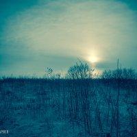 Пейзаж :: Антон Петляков