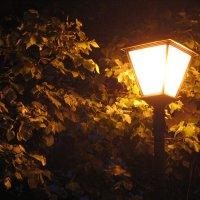 Ночь :: Дмитрий Ромашев