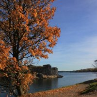 Теплая осень :: Anna Stoliarova