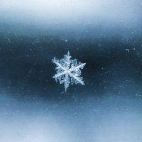 Снежинка упала на окошко) :: Алексей Шунин