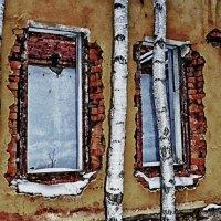 И снова окна.... :: Светлана Игнатьева