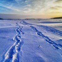 Три дороги... :: Светлана Игнатьева