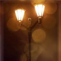 Ночной фонарь :: лиана алексеева