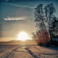 Дорога к солнцу :: Светлана Игнатьева