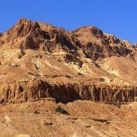 Пустыня Негев 3 :: Артем Кожанов