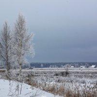Холодный пейзаж :: Юлия Левикова