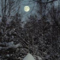 Полной луны сила :: Андрей Чуманов