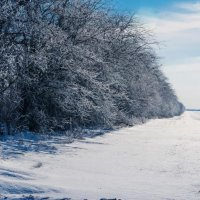 зима :: Андрей Черников