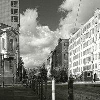 Черно-белая осень :: Михаил Зинин