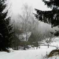 домик в лесу :: Юрий Бондер
