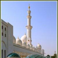 Гордость Объединённых Арабских Эмиратов :: Евгений Печенин