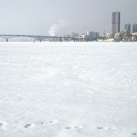 город Саратов на Волге :: Андрей ЕВСЕЕВ