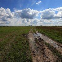 Через поле ближе :: Олег Кашаев