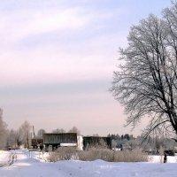 Настоящая зима :: Александр