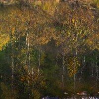 Заглянула осень в речку :: Нина северянка