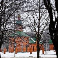 Зимний день :: Юлия Маляренко