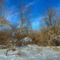 Зимний покой :: Denis Aksenov
