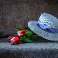 Упала шляпа.... :: Ирина Приходько