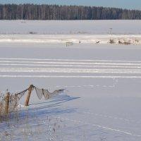 зимнее озеро :: Денис Шевчук