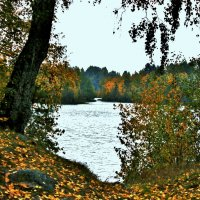 Золотая осень :: Зинаида Молчанова