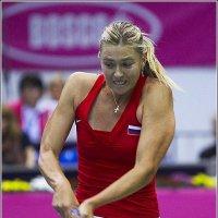 Большой теннис :: Валерий Шейкин
