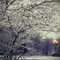 Засыпающий парк :: Ваадана Аар-ти