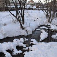 Причуды зимы :: Ксения