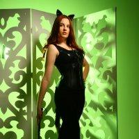 кошка :: Мирослава Марциненко