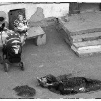 Чернуха (реалии жизни) :: Маргарита Лапина