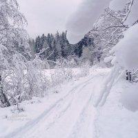 Зимняя сказка :: Анастасия Белякова