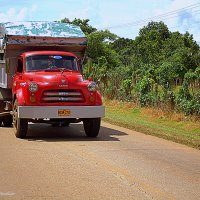 Red Truck :: Arman S